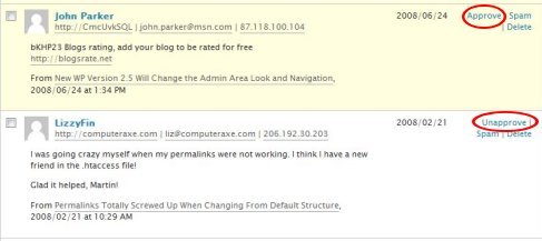 wordpress comments approval