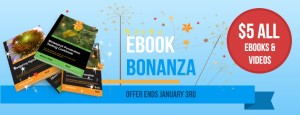 $5-ebooks